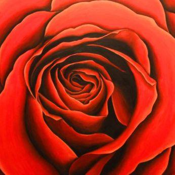 n.º: 7 Título: (sin título) Técnica: Óleo sobre lienzo Tamaño: 100x100 cm Año: 2017